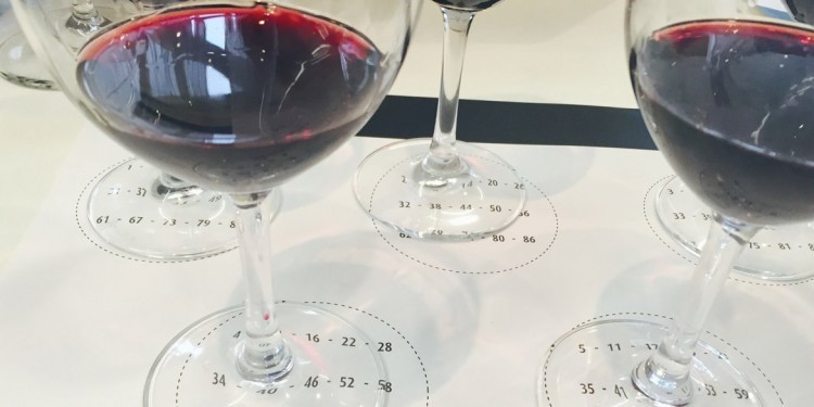 Amarone vintage 2012, what will be like?