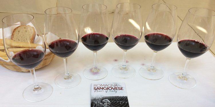 Sangiovese preview. The Romagna Sangiovese Riserva 2013 at the top