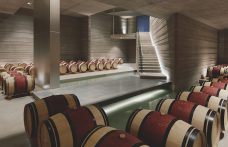 A temple for Masseto. The new cellar