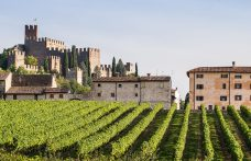 Soave also has its crus: the additional geographic units
