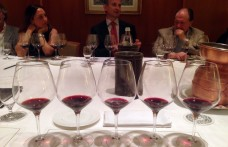 Montalcino, five vintages of Luce