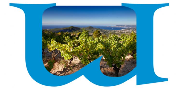The Mediterranean viticulture