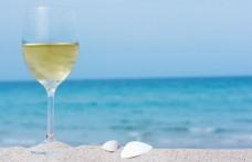 Holiday of Italian Wine Chronicle