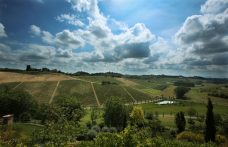 """The Santa Caterina Estate: an """"auteur"""" Freisa and lots of elegance"""