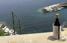 Gorgona wine: a white that smells of freedom