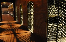 White wines from Alto Adige win the challenge of time