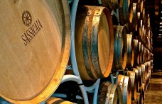 Sassicaia score and other stories
