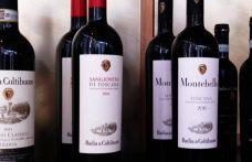 Montebello 2011: nine native grapes for just one Toscana IGT