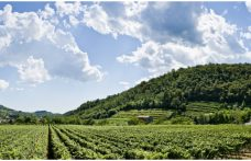 A weekend in Franciacorta, where art and nature come together
