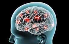 Neuromarketing. The emotions that make us love a label