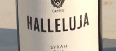 Halleluja 2015 Vini Campisi