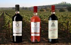 Territory, product, man: 3 signature DOCG Castel del Monte wines
