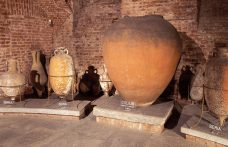 Wine in steel or terracotta: what's the difference