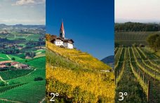 The Top 5 appellations most-awarded by the Guides