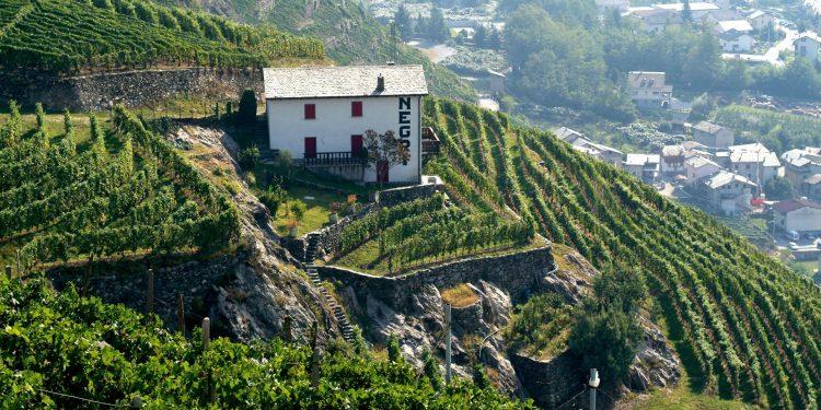 Nino Negri celebrates 120 years of history